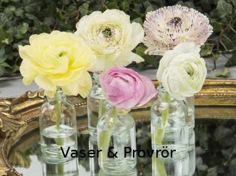 Vaser och provrör till bröllopsdukningen